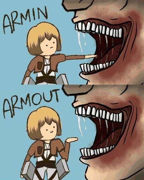 armin-armout